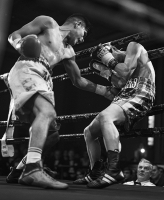 http://lacarreteradelacosta.com/files/gimgs/th-23_14_boxeo-round-14.jpg