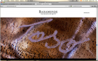 http://lacarreteradelacosta.com/files/gimgs/th-36_26_web-bahamonde-7.jpg