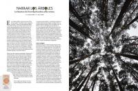 http://lacarreteradelacosta.com/files/gimgs/th-38_32_adn---articulo-arboles-1.jpg