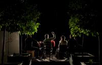http://lacarreteradelacosta.com/files/gimgs/th-43_12_flamenco-en-lazaro108.jpg
