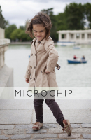 http://lacarreteradelacosta.com/files/gimgs/th-44_27_microchipred.jpg